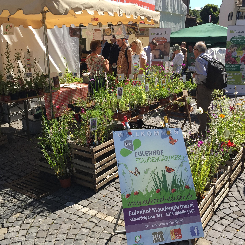 Events, Eulenhof - Staudengärtnerei